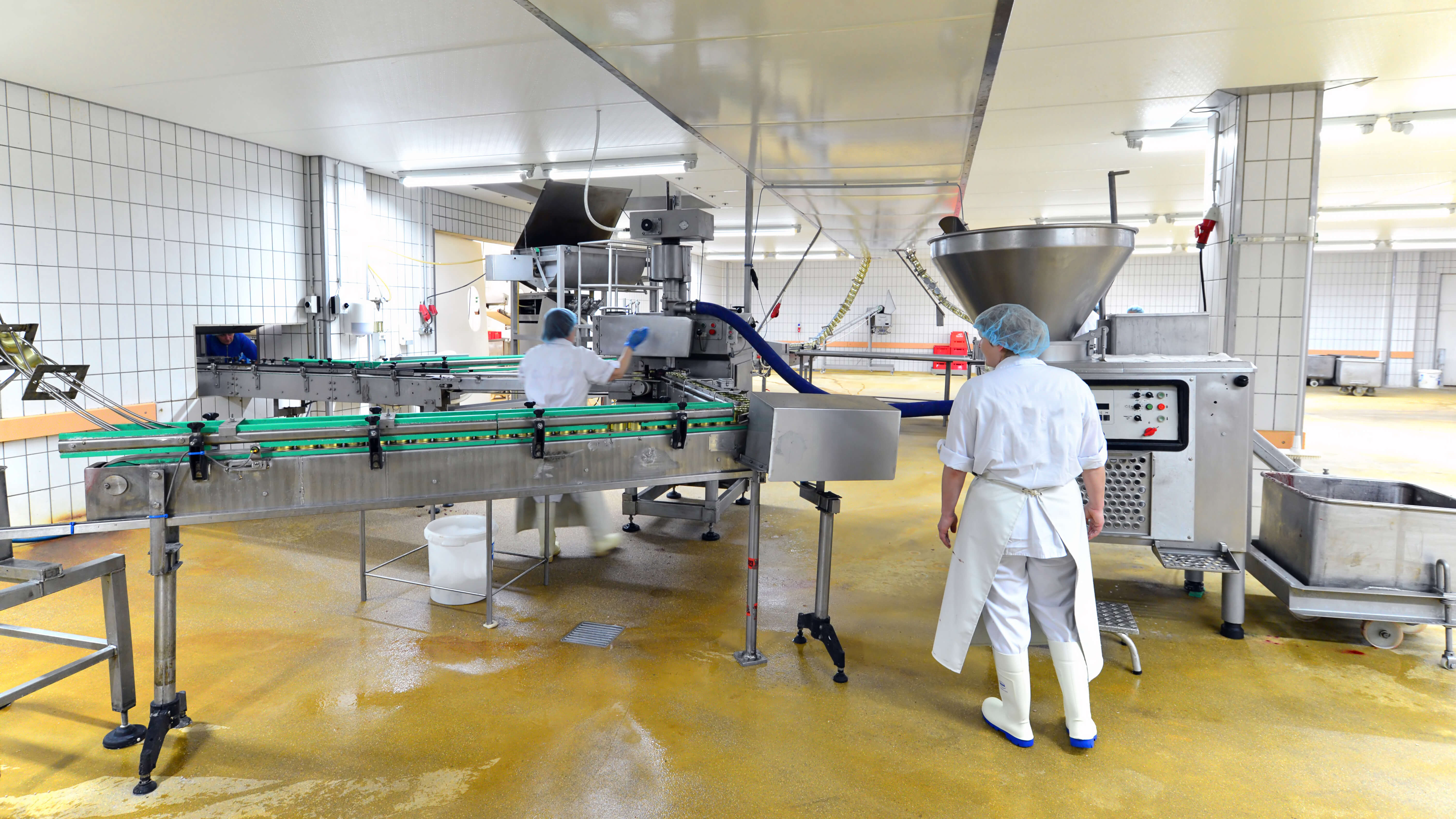 Food Processing Safety